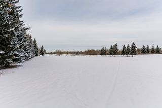 Photo 42: 235 GRAND MEADOW Crescent in Edmonton: Zone 29 House for sale : MLS®# E4181869