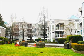Photo 1: 108 8450 JELLICOE Street in Vancouver: South Marine Condo for sale (Vancouver East)  : MLS®# R2432631
