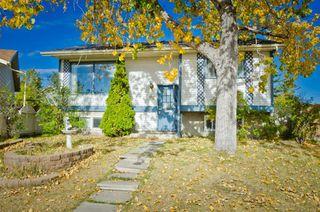Photo 1: 96 Faldale Close NE in Calgary: Falconridge Detached for sale : MLS®# A1039949
