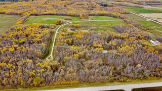Photo 9: #9 North Pigeon Lake Estates: Rural Wetaskiwin County Rural Land/Vacant Lot for sale : MLS®# E4217648