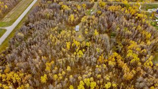 Photo 4: #9 North Pigeon Lake Estates: Rural Wetaskiwin County Rural Land/Vacant Lot for sale : MLS®# E4217648