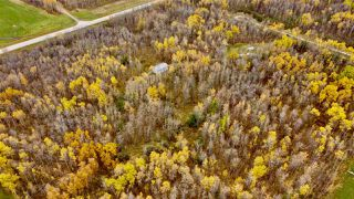 Photo 5: #9 North Pigeon Lake Estates: Rural Wetaskiwin County Rural Land/Vacant Lot for sale : MLS®# E4217648