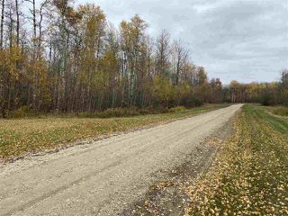 Photo 14: #9 North Pigeon Lake Estates: Rural Wetaskiwin County Rural Land/Vacant Lot for sale : MLS®# E4217648
