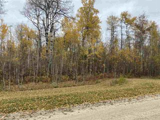 Photo 13: #9 North Pigeon Lake Estates: Rural Wetaskiwin County Rural Land/Vacant Lot for sale : MLS®# E4217648