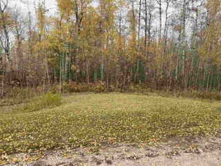 Photo 2: #9 North Pigeon Lake Estates: Rural Wetaskiwin County Rural Land/Vacant Lot for sale : MLS®# E4217648