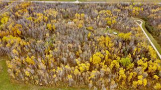 Photo 3: #9 North Pigeon Lake Estates: Rural Wetaskiwin County Rural Land/Vacant Lot for sale : MLS®# E4217648