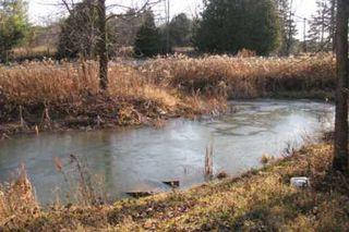 Photo 4: B1860 Highway 48 in Beaverton: House (Bungalow-Raised) for sale (N24: BEAVERTON)  : MLS®# N1864562