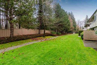 "Photo 1: 247 20391 96 Avenue in Langley: Walnut Grove Townhouse for sale in ""CHELSEA GREEN"" : MLS®# R2454296"