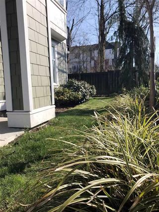 Photo 20: 29 20852 77a in Langley: Willoughby Heights Townhouse for sale : MLS®# R2448435