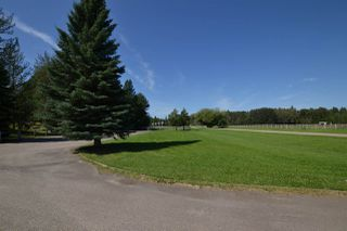 Photo 9: 51322- RR 262: Rural Parkland County Rural Land/Vacant Lot for sale : MLS®# E4209624