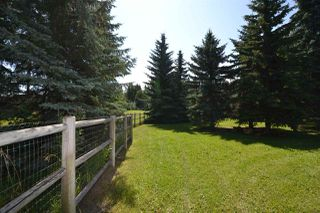 Photo 13: 51322- RR 262: Rural Parkland County Rural Land/Vacant Lot for sale : MLS®# E4209624