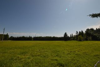 Photo 14: 51322- RR 262: Rural Parkland County Rural Land/Vacant Lot for sale : MLS®# E4209624