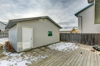 Photo 16: 9 Martin Crossing Link NE in Calgary: Martindale Detached for sale : MLS®# A1054846