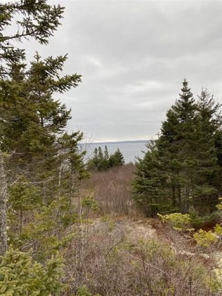 Photo 5: Lot 12 Tilley Point Road in Northwest Cove: 405-Lunenburg County Vacant Land for sale (South Shore)  : MLS®# 202100577