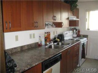 Photo 7: 3956 Arlene Pl in VICTORIA: SW Tillicum House for sale (Saanich West)  : MLS®# 530635