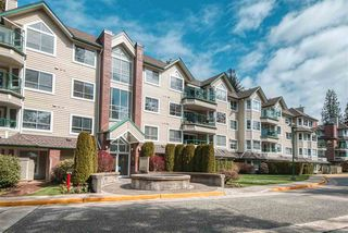"Main Photo: 207 3680 BANFF Court in North Vancouver: Northlands Condo for sale in ""PARKGATE MANOR"" : MLS®# R2461762"