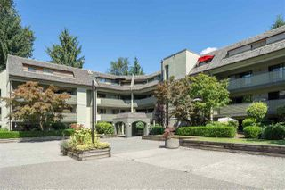 "Photo 26: 401 1210 PACIFIC Street in Coquitlam: North Coquitlam Condo for sale in ""Glenview Manor"" : MLS®# R2500348"