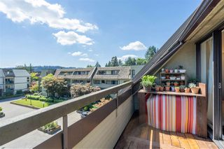 "Photo 22: 401 1210 PACIFIC Street in Coquitlam: North Coquitlam Condo for sale in ""Glenview Manor"" : MLS®# R2500348"