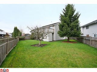 Photo 10: 20776 50B Avenue in Langley: Langley City House for sale : MLS®# F1021147