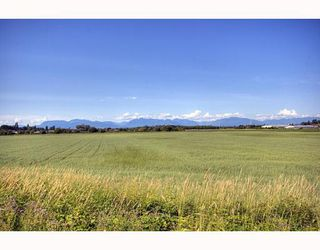 Photo 10: 3 6300 LONDON Road in Richmond: Steveston South Townhouse for sale : MLS®# V776905