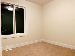 Photo 18: 10423 52 Avenue in Edmonton: Zone 15 House for sale : MLS®# E4174378