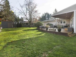 Photo 19: 19911 38 Avenue in Langley: Brookswood Langley House for sale : MLS®# R2418146