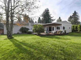 Photo 18: 19911 38 Avenue in Langley: Brookswood Langley House for sale : MLS®# R2418146