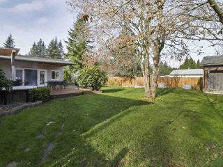 Photo 20: 19911 38 Avenue in Langley: Brookswood Langley House for sale : MLS®# R2418146