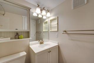Photo 33: 301 5005 31 Avenue in Edmonton: Zone 29 Condo for sale : MLS®# E4181489