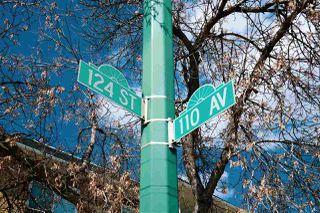 Photo 28: 30 11010 124 Street in Edmonton: Zone 07 Condo for sale : MLS®# E4195620