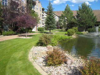Photo 16: 110 8942 156 Street in Edmonton: Zone 22 Condo for sale : MLS®# E4201492