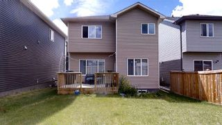 Photo 33: 1631 19 Street NW in Edmonton: Zone 30 House for sale : MLS®# E4204540