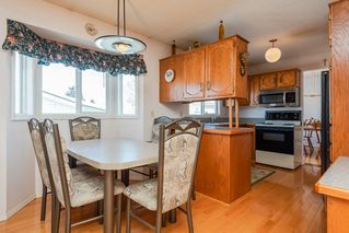 Photo 10: 4812 11A Avenue NW in Edmonton: Zone 29 House for sale : MLS®# E4189056