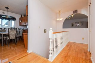 Photo 19: 4812 11A Avenue NW in Edmonton: Zone 29 House for sale : MLS®# E4189056