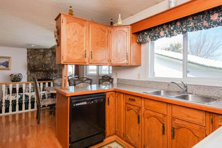 Photo 7: 4812 11A Avenue NW in Edmonton: Zone 29 House for sale : MLS®# E4189056