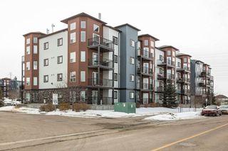 Photo 7: 118 400 SILVER_BERRY Road in Edmonton: Zone 30 Condo for sale : MLS®# E4190279