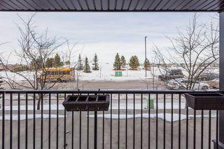 Photo 26: 118 400 SILVER_BERRY Road in Edmonton: Zone 30 Condo for sale : MLS®# E4190279