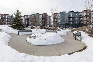 Photo 35: 118 400 SILVER_BERRY Road in Edmonton: Zone 30 Condo for sale : MLS®# E4190279