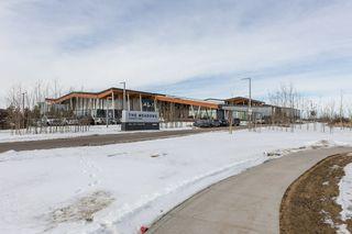Photo 41: 118 400 SILVER_BERRY Road in Edmonton: Zone 30 Condo for sale : MLS®# E4190279