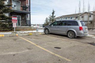 Photo 34: 118 400 SILVER_BERRY Road in Edmonton: Zone 30 Condo for sale : MLS®# E4190279