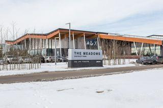 Photo 40: 118 400 SILVER_BERRY Road in Edmonton: Zone 30 Condo for sale : MLS®# E4190279