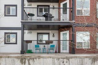 Photo 27: 118 400 SILVER_BERRY Road in Edmonton: Zone 30 Condo for sale : MLS®# E4190279