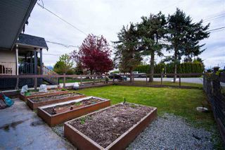 Photo 6: 34705 4TH Avenue in Abbotsford: Poplar House for sale : MLS®# R2452396