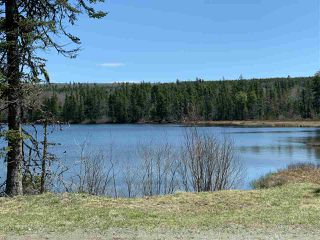 Photo 1: LOT 11-4 Dryden Lake Road in Glengarry Station: 108-Rural Pictou County Vacant Land for sale (Northern Region)  : MLS®# 202008641