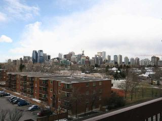 Photo 20: 423 1505 8 Avenue NW in CALGARY: Hillhurst Condo for sale (Calgary)  : MLS®# C3421521