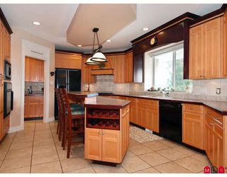 Photo 2: 11228 163RD Street in Surrey: Fraser Heights House for sale (North Surrey)  : MLS®# F2902141