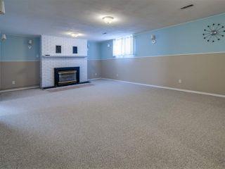 Photo 14: 8724 89 Avenue in Edmonton: Zone 18 House for sale : MLS®# E4187395