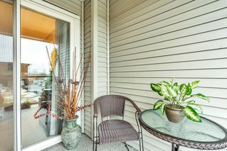 """Photo 21: 321 20200 56 Avenue in Langley: Langley City Condo for sale in """"THE BENTLEY"""" : MLS®# R2526223"""