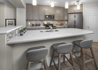 Photo 5: 2717 Price Link in Edmonton: Zone 55 House for sale : MLS®# E4174036