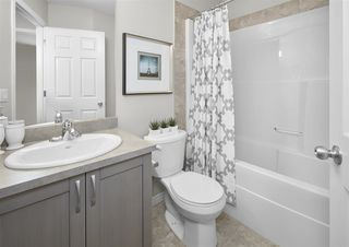Photo 19: 2717 Price Link in Edmonton: Zone 55 House for sale : MLS®# E4174036